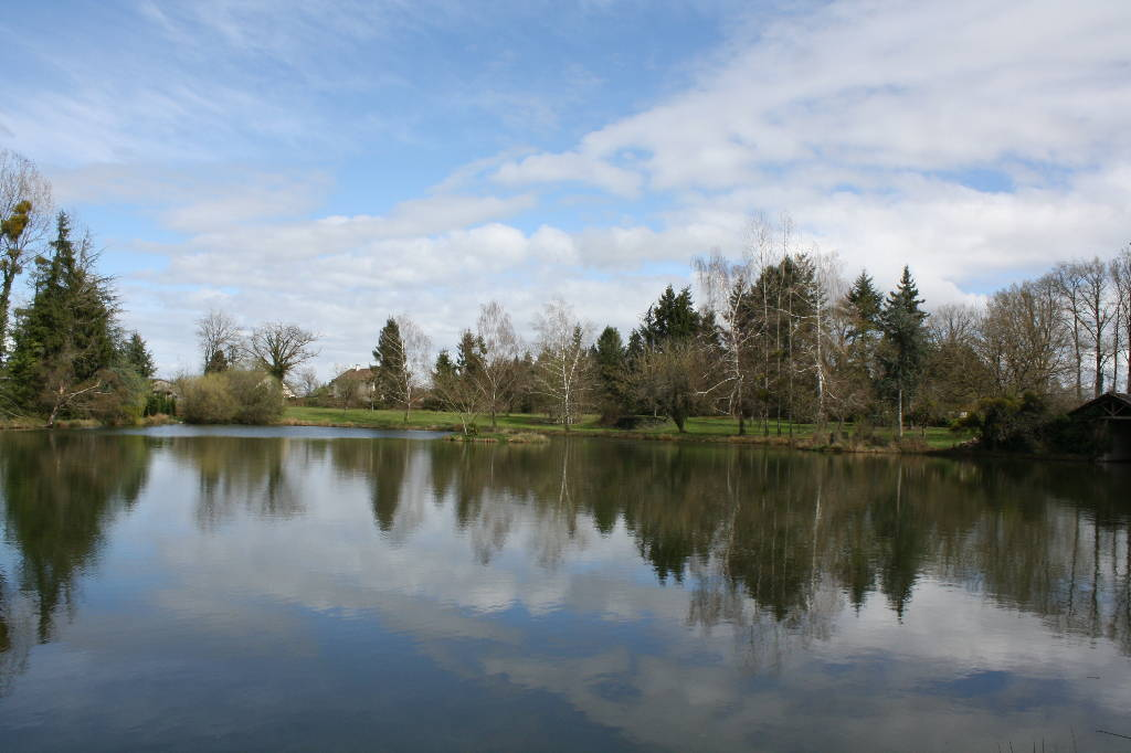 Early spring at Woodpecker - Fishing Lakes France