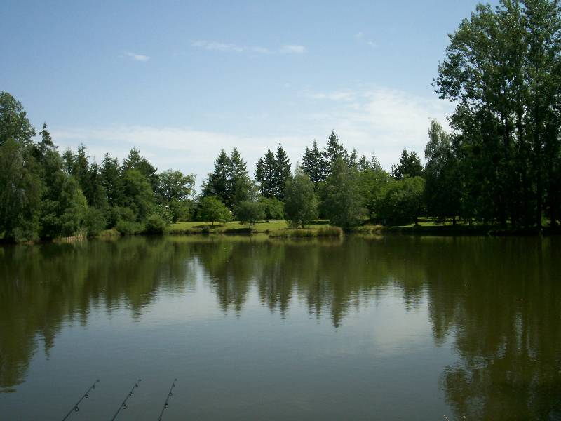 Summer at Woodpecker - Fishing Lakes France