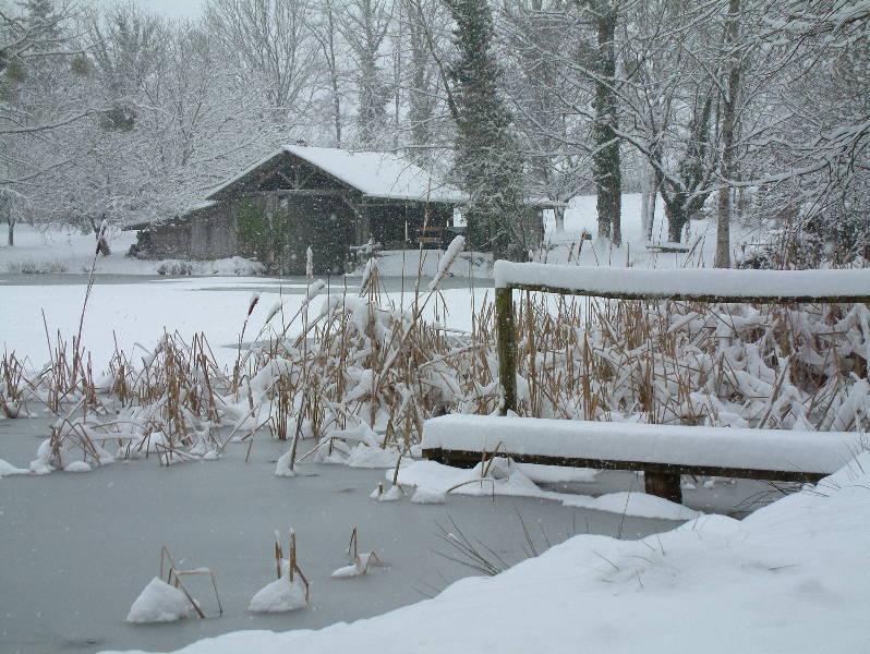 Winter at Woodpecker - Fishing Lakes France